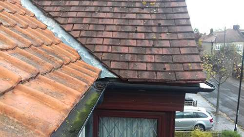 Guttering Repairs Sutton London